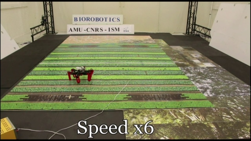 AntBot A six legged walking robot able to home like desert ants in outdoor environments