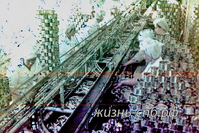 Латвийская ССР. г. Вентспилс. В цехе рыбоконсервного комбината им. Яна Рудзутака.