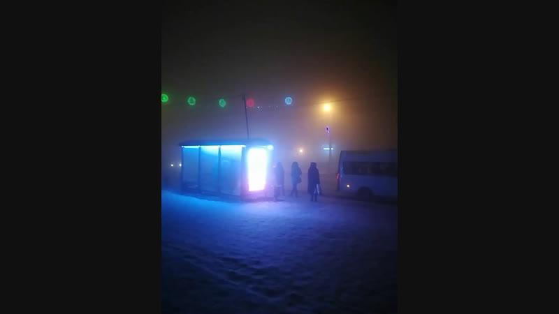 Свободный артист - Владимир Ерошкин. Несмотря на лютый мороз и густой туман исполнял песни для жителей нашего города.