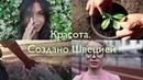 """Oriflame Russia on Instagram: """"Мы родом из Швеции, и у нас особый взгляд на красоту. Для нас красота — это не только то, как ты выглядишь, но и тво..."""