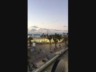 Тельце-Авив