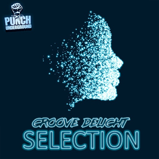 Groove Delight альбом Selection