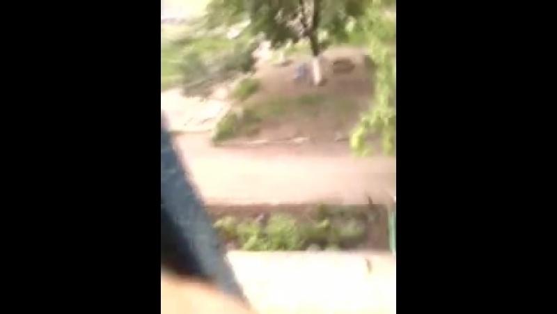 Луганск Ровеньки вид из окна