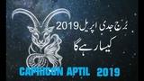 monthly horoscope capricorn,