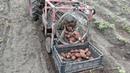 Картофелекопалка барабанного типа к тяжелому мотоблоку, с контейнером для сбора картофеля часть 2.