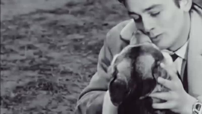 ★« Павел Пламенев -«УмираетМояСобака...»★«Пёс»(«Le chien»).France.(1962).