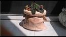 Kumaşla Beton Saksı Yapımı-3 Farklı Yeni bir Metod