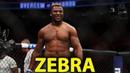 UFC CHINA - CARD COMPLETO E FAVORITOS UFC NGANNOU VS BLAYDES