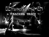Read It In Books Backing Track By Echo And The Bunnymen