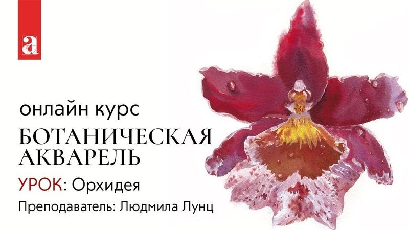 Урок «Орхидея» | Курс «Ботаническая акварель»