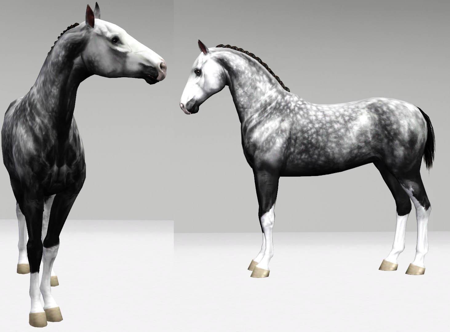 Регистрация лошадей в RHF 2 - Страница 8 Ga09LzSPrRY