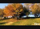 Yerevan Autumn