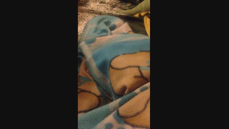 Морской свинтус
