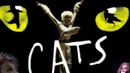 Кошки / Cats 1998 HD мюзикл субтитры