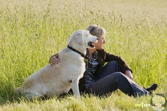 """""""Собаке ни к чему дорогие машины, большие дома или дизайнерская одежда. Брошенной в воду палки будет достаточно. Собаке всё равно, беден ты или богат, умён или глуп, остроумен или скучен. Отдай ей своё сердце, и она отдаст своё. О многих людях можно сказа"""