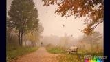 Lx24-Осенний туман