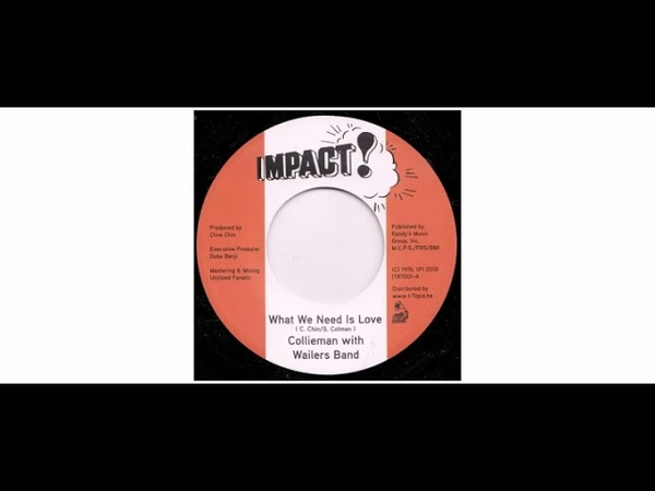 Stefaan Collieman Colman The Wailers Band What We Need Is Love 7 Impact