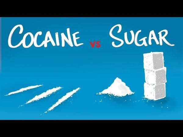Cocaine vs Sugar