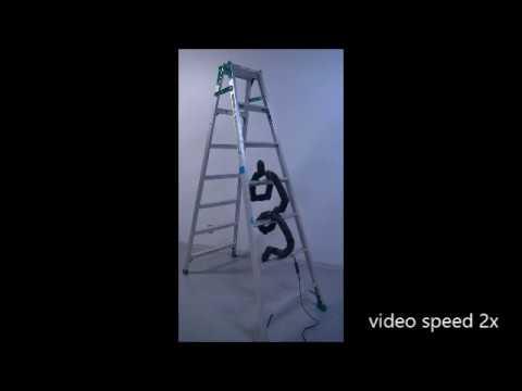 Ladder Climbing with a Snake Robot