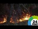 Греция после пожаров: дрон снял апокалиптический пейзаж - МИР 24