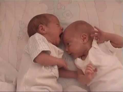 Twin babies 20 days old - funny fight