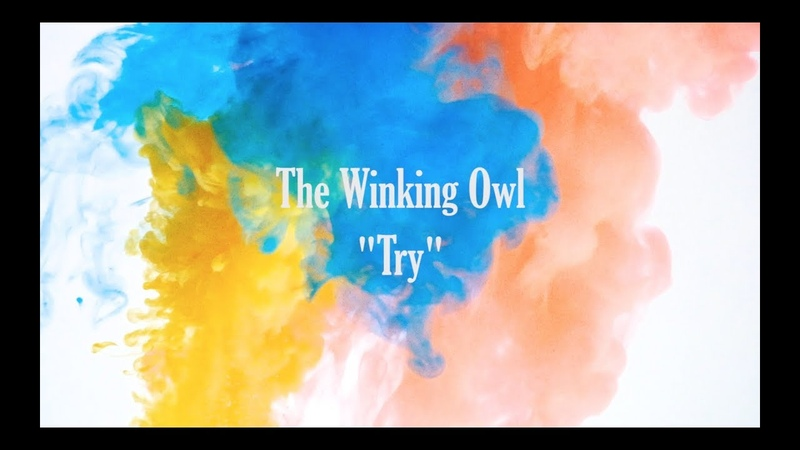 The Winking Owl Try Official Music Video