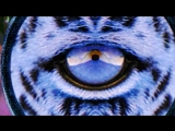 Bassnectar- Journey To The Center