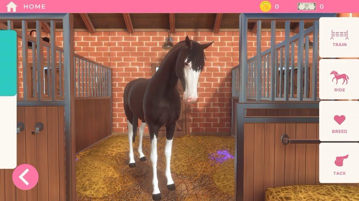 """Equestrian The Horse Game on Instagram A peek into the stable Nevermind the spots of purple hay this is how you know it's a work in progress 😂👍🏼"""""""