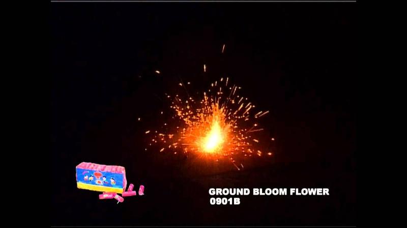 GROUND BLOOM FLOWER - WINDA - 0901B