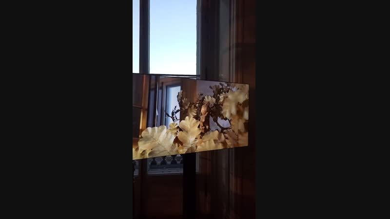 Золотые часы в Эрмитаже. На них можно смотреть часами 😊☝️