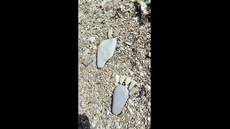 лапки из камней на пляже в Новороссийске 16.06.19.