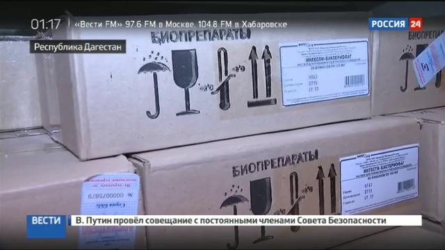Новости на Россия 24 • Кишечная инфекция в Дагестане в больницах остаются сотни детей