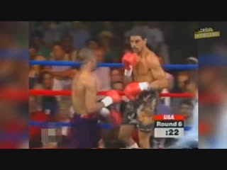 The Legendary Boxer - Roy Jones Jr. ¦ TOP 10 Best Knockouts
