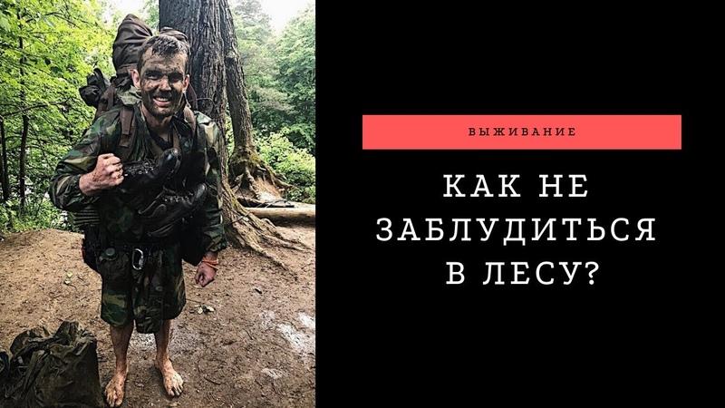 Как не заблудиться в лесу. Советы от Бобошко Михаила