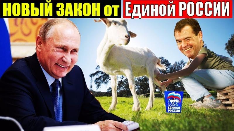 ВОТ это РАЗРЫВ! НОВЫЙ НАЛОГ на КОЗ и КУР! ЕДИНАЯ РОССИЯ ВНЕСЛА ЗАКОНОПРОЕКТ в ГОС.ДУМУ!