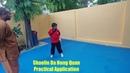 Shaolin Da Hong Quan Combat Application