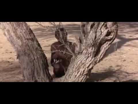 Baboon Trap
