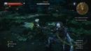 The Witcher 3 Wild Hunt Прохождение ► 025