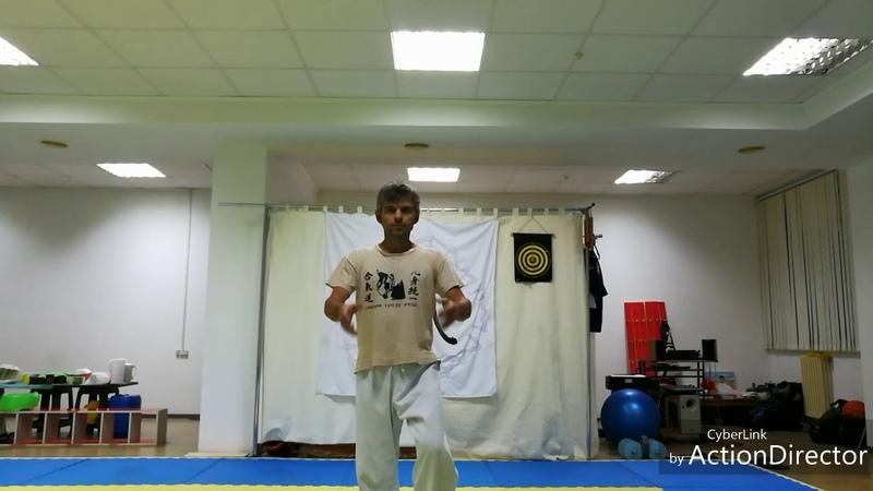 ЖивоЛад - Цигун ( Тренировка баланса 3 формы)
