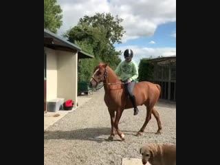 Слезаем с лошадки))