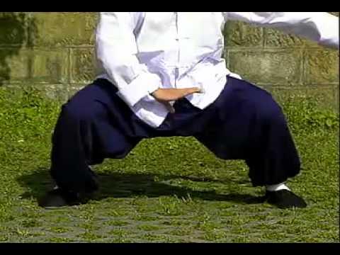 Wushu Lian Huan Ba Ji Quan tutorial