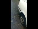 Ночью в Петропавловске неизвестные вредители прокололи шины у десятка автомобилей