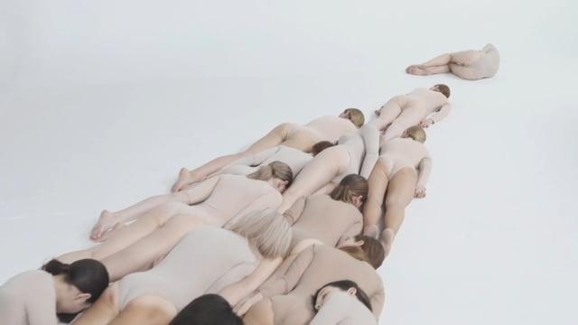 Otocyon - Body
