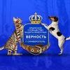 ВЕРНОСТЬ Симферополь помощь. Бездомные животные