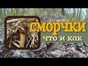 Сморчки - первые весенние грибы. Где собирать, как готовить, мнение экспертов. Подробно.