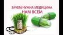 Медицина - традиционная, нетрадиционная - разница, полезность. Татьянин час