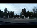 Зебра на Авдеева у Парка