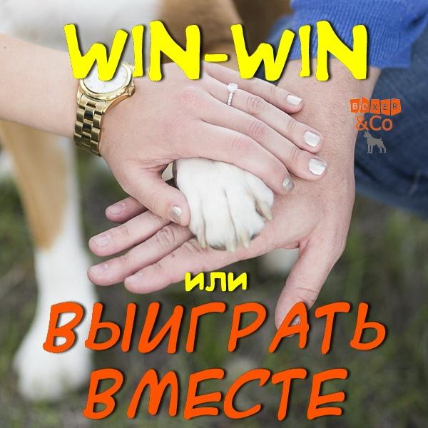 Выиграть вместе Lb0JWpc10Ew