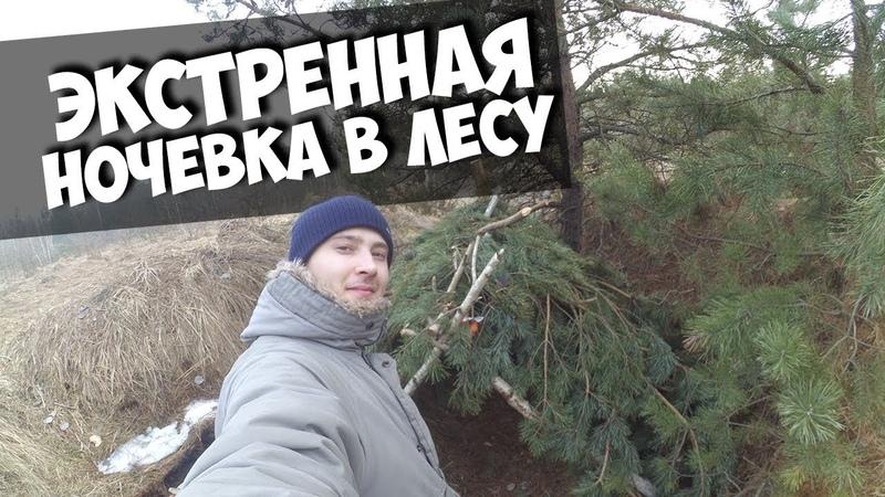 ЭКСТРЕННАЯ НОЧЕВКА 24 ЧАСА В ЛЕСУ - НЕ НАШЕЛ ЗЕМЛЯНКИ