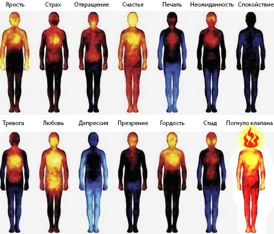 Тепловая карта эмоций